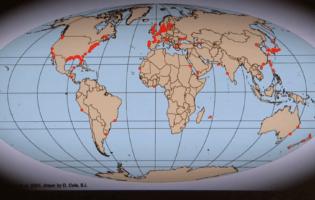 危機に瀕している地球